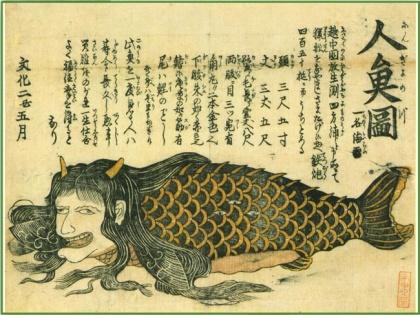 일본문화의 원류를 찾아서.jpg